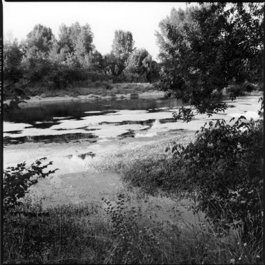 Graziella Reggio, paesaggi - landscapes