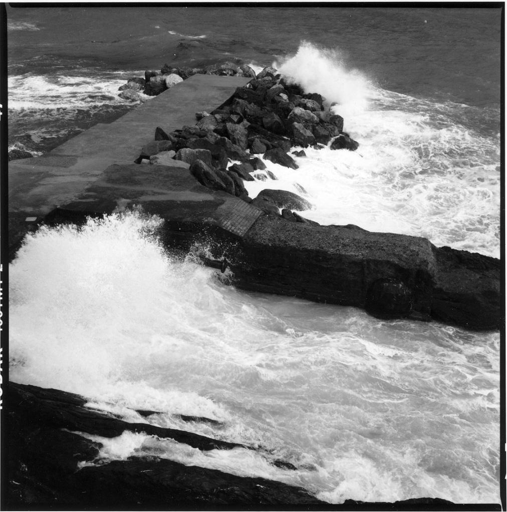 Graziella Reggio - The Sea - Camogli 2020